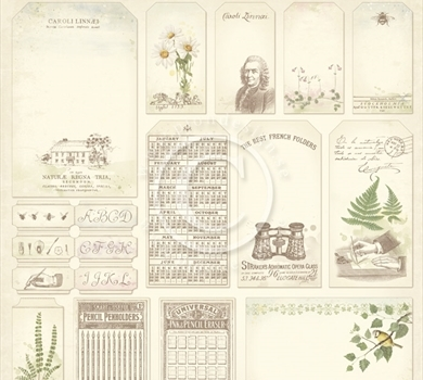 >Linnaeus Botanical Journal - Tags 12x12